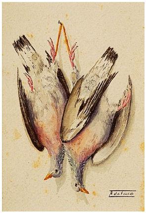 Natureza morta - pombos pendurados