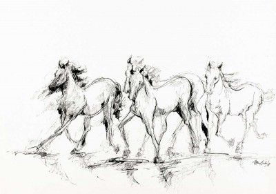 Sem título - Cavalos