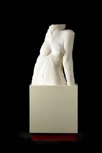 Torso feminino