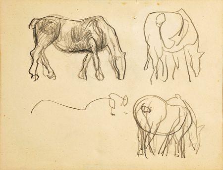 """Estudos para cavalos"""